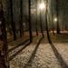 Téli árnyak