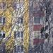 Radisics Milán (Zoom): URBÁN ÁLLATOK, Erdei fülesbagoly, 6723 Sz