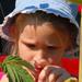 2008 július Székelyföld