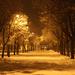 Zsákutca a hóban...