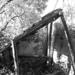 Album - Régi épületek -Romos házak