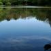 Pisztrángos tó a Hidegvízvölgyben
