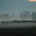 Decemberi köd