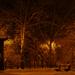 park éjszaka