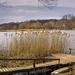 Sülysápi-tó