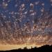 égi fények, báránykák