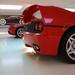 Enzo +  F50